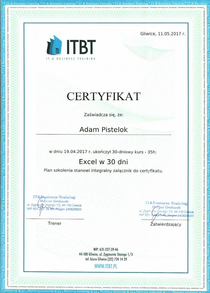 Excel1-733x1024