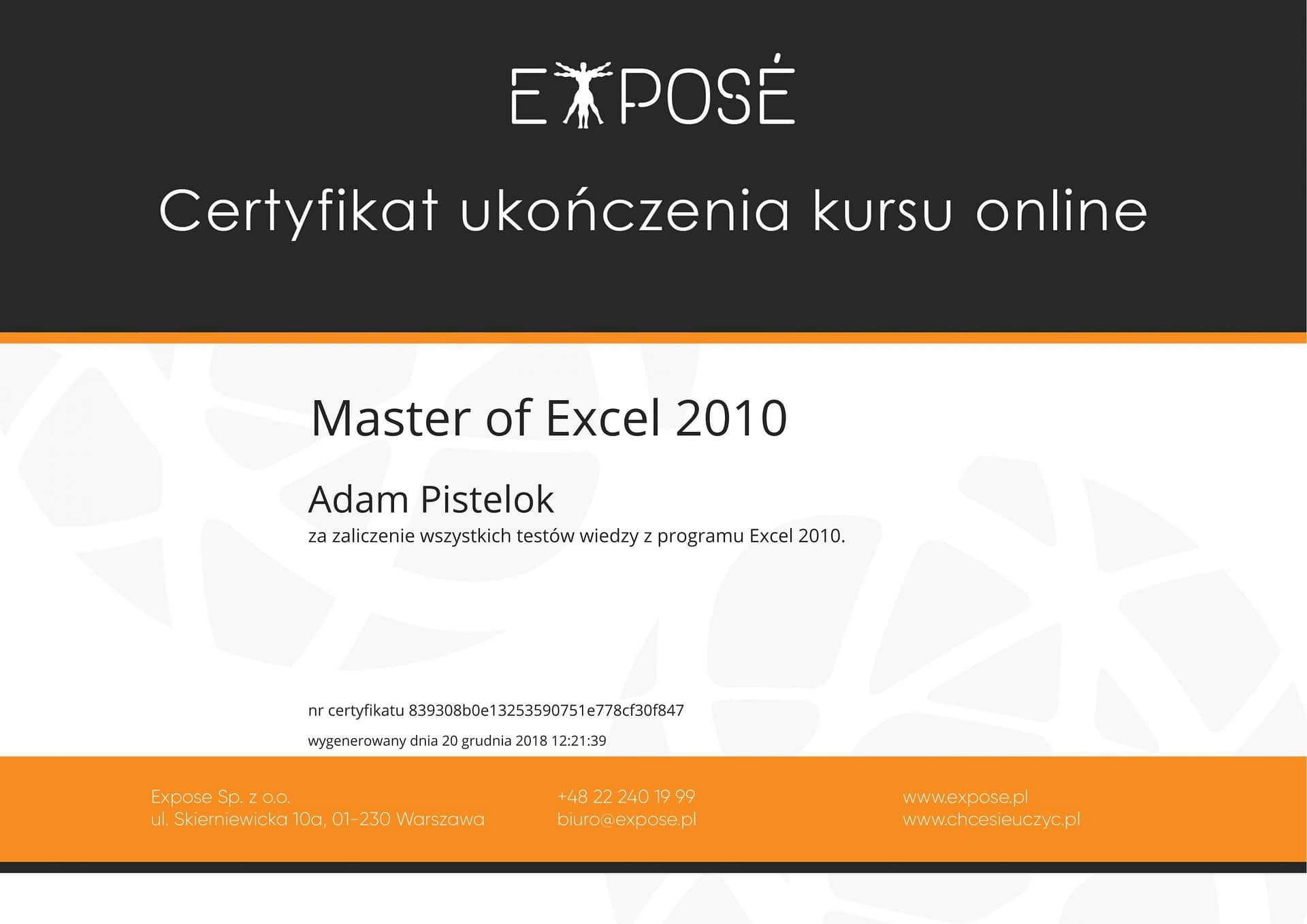 Master of excel 2010