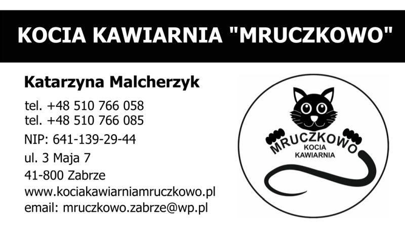 Kociakawiarnia1-800x452