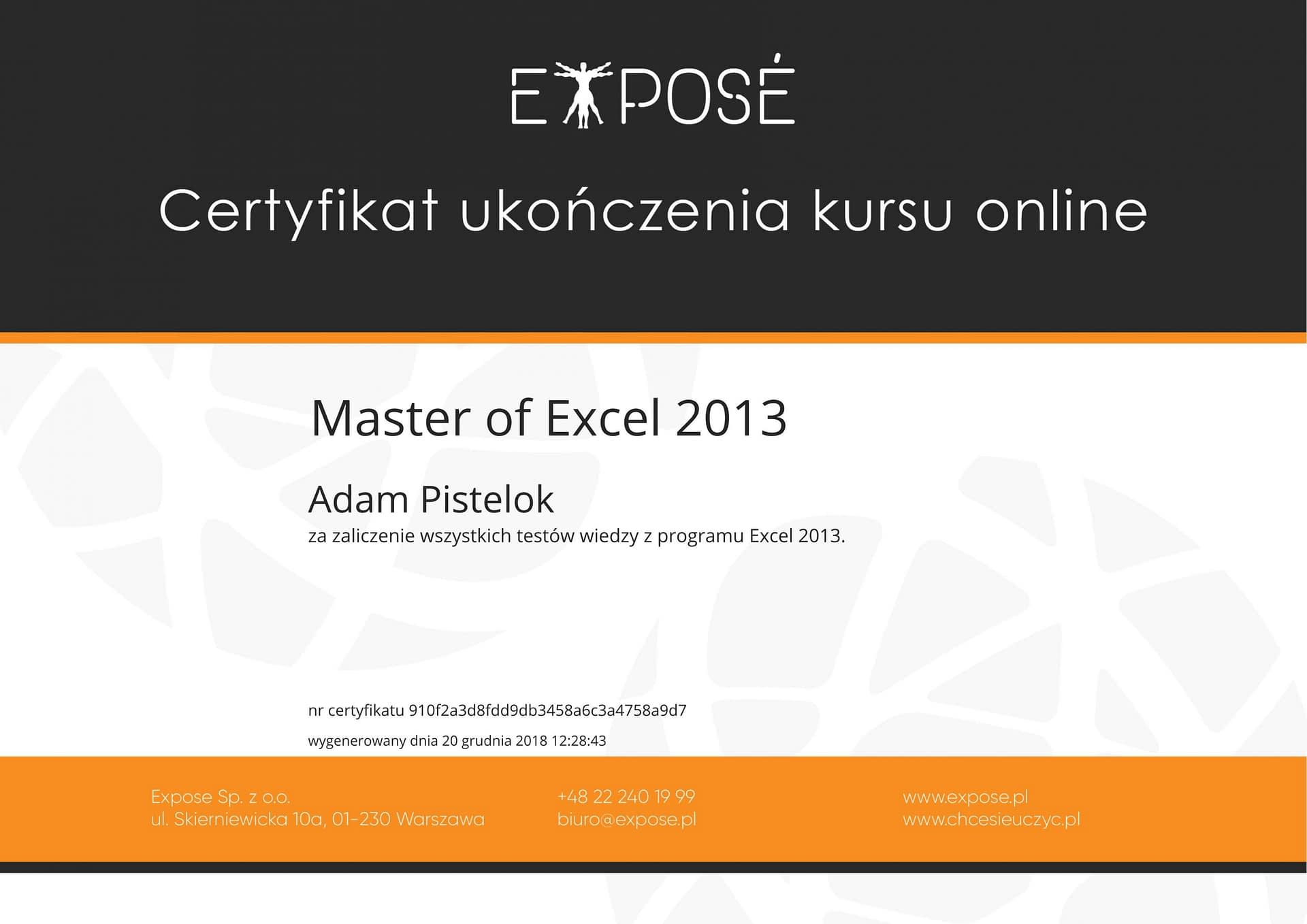 Master of excel 2013
